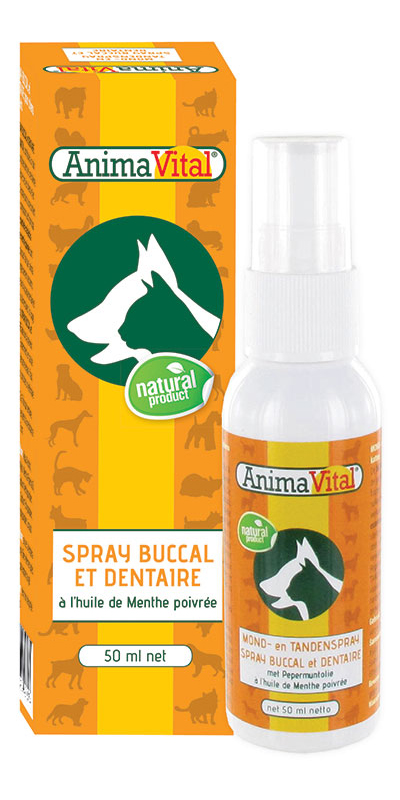 Spray buccal & dentaire